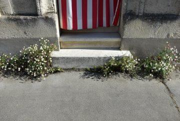 rue de ladous, bordeaux, 17 avril 2017