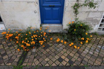rue-de-tresses-bordeaux-bastide-16-avril-2020