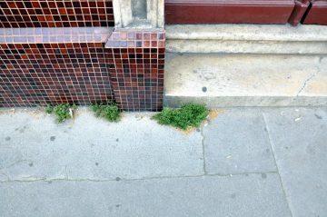 rue judaique, bordeaux, 09 juillet 2013 (1)