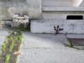 rue jeanne, bordeaux cauderan, 20 novembre 2012